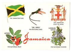 jamaica national flower | Jamaica National Bird