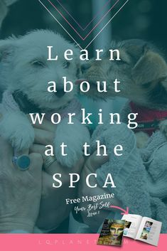 Learn about working at the SPCA, YOUR BEST SELF MAGAZINE. Spca animals, spca shelter, spca life, spca  dogs, animal welfare, animal articles, animal rescue stories, animal rescue shelter, animal rescue facility, animal rescue organization, animal rescue pictures, animal rescue stories happy endings, faith in humanity animals, faith in humanity pets, faith in humanity heros, working with animals jobs, working with animals pets, saving animals stories, saving animals shelters, help animals…