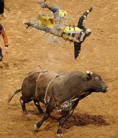 You wont believe the story of Tony Bell, a boy who almost died, then became a bull rider