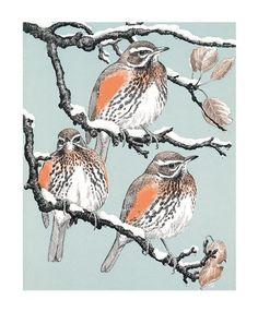 'Redwings' by Robert Gillmor (A683w)