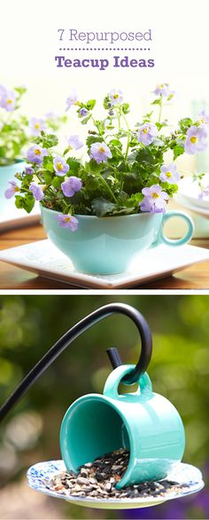 Turn teacups into adorable crafts with our 7 ideas for repurposing teacups into useful household items, like planters or bird-feeders!