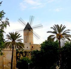 Moulins - Majorque