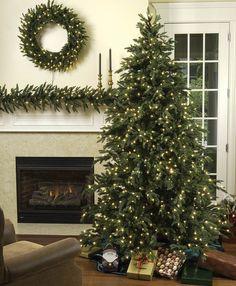 Carolina Fir Pre-Lit Christmas Tree, Incandescent or LED