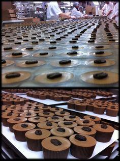 Yummy > Chocolaterie Bernard Callebaut