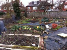 feb 2014-the start of my allotment journey