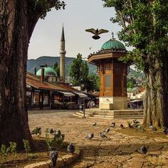 The Sebilj is a kiosk-shaped wooden and stone fountain. It is a pseudo-Ottoman-style wooden fountain (Sebil) in the center of Baščaršija square in Sarajevo built by Mehmed Pasha Kukavica in 1753. It was relocated by Austrian architect Alexander Wittek in 1891. The square is also called the pigeon square. Bosnia and Herzegovina. (V)