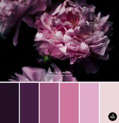 a peony-inspired color palette — Akula Kreative a peony-inspired color palette // deep purple, pink, light gray Purple Color Schemes, Purple Color Palettes, Purple Palette, Deep Purple Color, Colour Pallette, Color Combos, Purple Rain, Mauve Color, Lila Palette