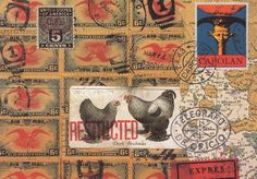 Rearing Chickens by Nick Bantock
