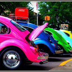 Bug Heaven....