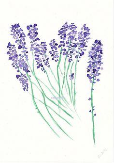 Lavender water colour