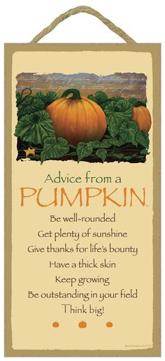 """Pumpkin, Advice From A - 5"""" x 10"""" Advice Sign Wood Plaque Wood Sign Wall Decor Home Decor Flower Sign by TheCarolinaTrader on Etsy"""