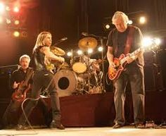 Resultado de imagem para the stooges The Stooges, Iggy Pop, Concert, Concerts