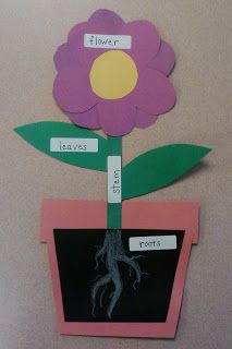 Bright plant model!  Just looks different than others I have seen!  =)