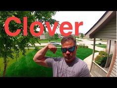 How To Get Rid Of Clover In Your Lawn - YouTube