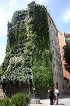 """My Private """"Vegitecture"""" Tour of Jardí Tarradellas, Barcelona's Tallest Residential Vertical Garden Green Architecture, Sustainable Architecture, Green Facade, Green Roofs, Dome Greenhouse, Vertical Gardens, Green Landscape, Plant Wall, Green Building"""