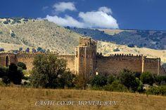 castillo de puebla de montalban(toledo)