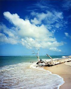 Nature at its best, Azura Benguerra Island, Mozambique  www.azura-retreats.com/benguerra Beach Art, Ocean Beach, Beach Bodys, Photography Beach, Destinations, Ocean Shores, Life Hacks, I Love The Beach, Beautiful Beaches