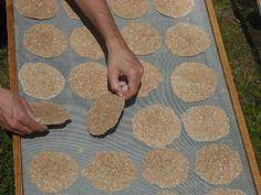 Essener-Brot selbst gemacht - Anleitung