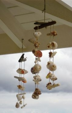Seashell crafts--lookingfor ideas to use all the beautiful shells I collected in Panama, if anyone has ideas