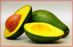 Buah Alukat sebagai herbal penurun kolesterol