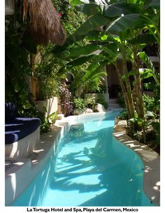 This is one of my all time favorites. It's like a small swimming pool mote around an interior courtyard where you can swim up to your room's patio. I imagine this in my dream home or B! ~ Hotel La Tortuga Playa del Carmen Riviera Maya