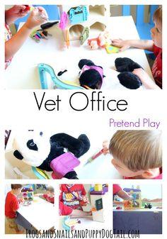 Vet Office Pretend Play for Kids