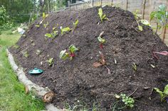 Build A Survival Garden Using Hugelkultur Uses LESS water and is self nutrient feeding... Great way to plant your survival garden