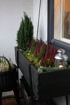 Lasitetun parvekkeen päivitys talviasuun - Pikkutalon elämää Small Balcony Design, Small Patio, Balcony Plants, Balcony Garden, Winter Balkon, Winter Hanging Baskets, Front Door Christmas Decorations, Winter Planter, Outdoor Living