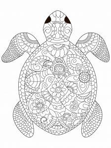 Sea Turtle Coloring Book For Adults Vector Illustration Anti Stress Adult Black And White Lines Acquista Questo Contenuto Vettoriale Su