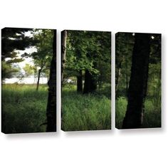 ArtWall Kevin Calkins Birch and Pines 3-Piece Gallery-Wrapped Canvas Set, Size: 24 x 36, Black