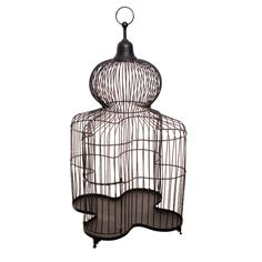 Shaped steel bird cage