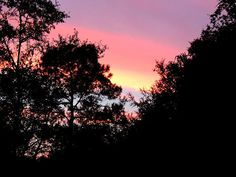 Perry fl USA Sunrise over Perry by Marilyn Holkham