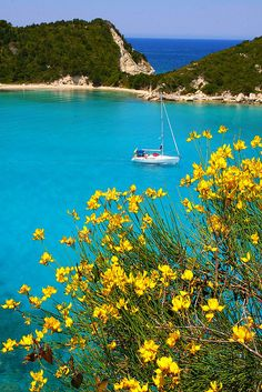 Cove with turquoise water and yellow broom in Lakka bay, Paxos Island, Yalos, Peloponnese Western Greece n de Ionian Island_ Greece Beautiful Islands, Beautiful Beaches, Beautiful World, Oh The Places You'll Go, Places To Travel, Places To Visit, Paxos Island, Myconos, Greece Travel
