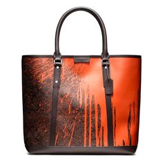 Krink collaboration x Coach  bags