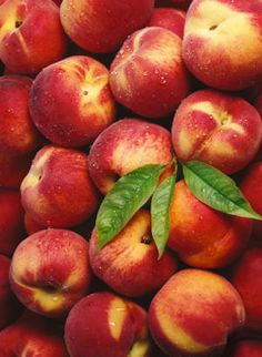 Peaches mmmmm..... I have a peach orchard right in front of my front yard. Peaches are my absolute favorite. Slice them up, put them in a bowl and pour some cream over them with a sprinkling of sugar....awwww!