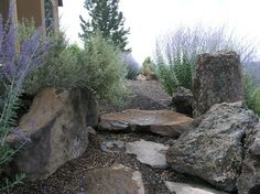 Hillside Retreat - contemporary - landscape - other metro - Heart Springs Landscape Design, LLC Rock Garden Design, Yard Design, Contemporary Landscape, Landscape Design, High Desert Landscaping, Drought Tolerant Landscape, Spring Landscape, Farm Gardens, Backyard
