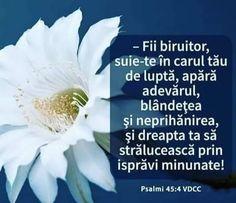 Bible Verses, God, Nice, Bible, Dios, Allah, Scripture Verses, Bible Scripture Quotes, Nice France