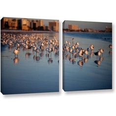 ArtWall Lindsey Janich Seagulls II 2-Piece Floater Framed Canvas Set, Size: 24 x 36, Brown