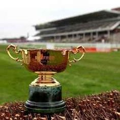 Think you know your stuff about the Cheltenham Gold Cup? Take our free quiz and find out now! Horse Racing Tips, Racing News, Gold Cup, Horse Farms, Fountain, Horses, Legends, Free, History