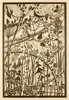 Helen Roddie ~ Hedgerow Weave ~ Linocut, 300 x 470 mm