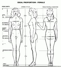 Anatomy and Proportion for Drawing