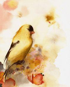 #watercolor bird