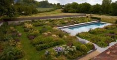Beautiful perennial and ornamental grass gardens surrounding this simple swimming pool. By Tom Stuart-Smith, Wiltshire garden