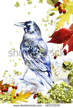 Painted crow bird with frame of real leaves, berries and flowers. Collage. Nature,  weather, season, winter, autumn.