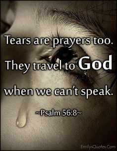 Image result for tear quotes