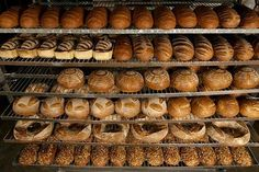San francisco pastry school #san #francisco #baking #institute #pastry #baking #school #professional, #bread, #pastry, #baker, #pastry #chef, #flour, #chocolate, #bakery, #pizza, #wood #fire, #baguetter #croissant, #wheat, #macaroon, #gluten, #rye, #whole #wheat, #ciabatta, #baking #school,baking #career, #baking #classes, #baking #class, #baking #courses, #baking #college, #pastry #baking, #baking #course, #bread #and #bakery #professional #training…