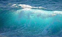 pictures of waves in the ocean - Bing Images Water Waves, Sea Waves, Water 3, Water Cycle, Deep Water, Sea And Ocean, Ocean Beach, The Sea, Beautiful Ocean