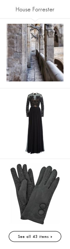 """House Forrester"" by lillian-pandola ❤ liked on Polyvore featuring dresses, gowns, elie saab, black, silk gown, see-through dresses, evening maxi dresses, embellished gown, elie saab gowns and accessories"