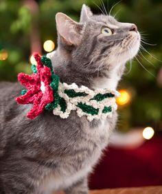 Dekoriere auch dein Kätzchen. Dieser Weihnachtssternkragen ist schnell gehäkelt und das perfekte Accessoire für modebewusste Kätzchen.