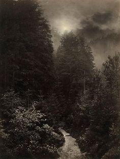 Atelier Freimund Edlich - Waldweg bei Mondschein, um 1870